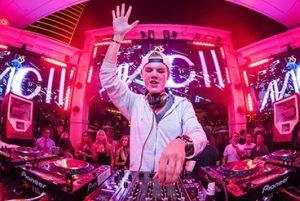 Andre-Werneck-Superstar-DJs-Avicii